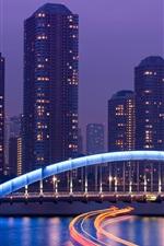 Preview iPhone wallpaper Tokyo, Japan, metropolis, skyscrapers, night, lights, bridge, river