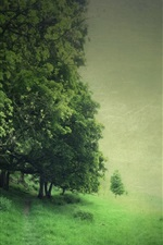 Preview iPhone wallpaper Trees, field, green style
