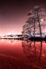 Preview iPhone wallpaper Winter, river, sky, snow, trees, grass, leaves, purple style