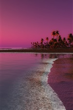 Preview iPhone wallpaper Beach, sunset, palm trees, sea, dusk