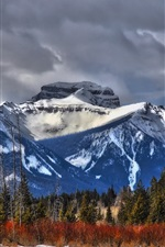 Canada, Alberta, mountains, trees, clouds