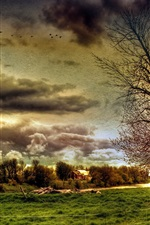 Preview iPhone wallpaper Farm field, horses, trees, house, clouds, HDR style