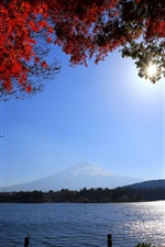 Preview iPhone wallpaper Japan, Mount Fuji, road, river, twigs, red leaves, sun