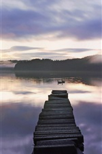 Preview iPhone wallpaper Lake, bridge, swans, fog, forest, sunrise