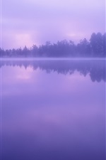 Preview iPhone wallpaper Lake, water, forest, trees, dusk, fog