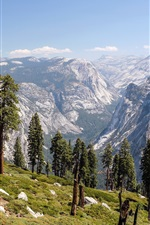 Preview iPhone wallpaper Mountains, trees, valley, Yosemite National Park, California, USA