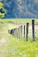 Preview iPhone wallpaper Nature, fence, meadow, grass, trees