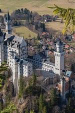 Preview iPhone wallpaper Neuschwanstein, castle, trees, Bavaria, Germany