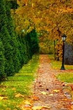 미리보기 iPhone 배경 화면 공원, 가을, 도로, 나무, 랜턴, 잎
