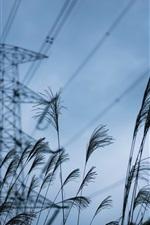 Preview iPhone wallpaper Power lines, sky, grass, dusk