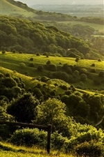Preview iPhone wallpaper Pyecombe, West Sussex, England, farm, hills, green, trees