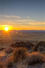 Utah, USA, grass, sunrise, dawn