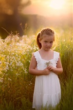 Preview iPhone wallpaper Cute white dress girl, summer, grass, field