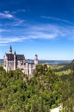 Preview iPhone wallpaper Germany, Bavaria, Neuschwanstein castle, mountains, trees, blue sky