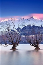 Preview iPhone wallpaper Lake Wakatipu, Queenstown, New Zealand, Southern Alps, trees