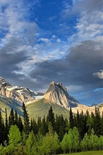 Preview iPhone wallpaper Mount Lougheed, Alberta, Canada, Canadian Rockies, forest, trees