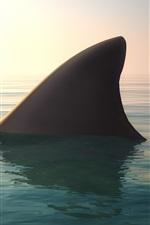 Preview iPhone wallpaper Shark, fin, water, ocean