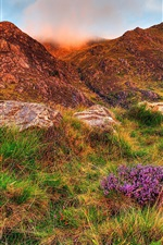 Preview iPhone wallpaper Snowdonia, sky, clouds, mountains, rocks, flowers, grass