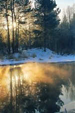 Winter, morning, river, snow, trees, sun rays