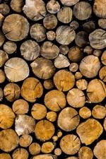 Logs, wood, bark, trees