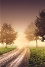 Preview iPhone wallpaper Morning, fog, haze, trees, road