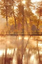 iPhone壁紙のプレビュー 自然、秋の木々、黄色、水の反射、木製の橋、日光