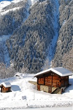 Preview iPhone wallpaper Nature landscape, winter, forest, trees, houses, mountains, snow