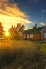 Preview iPhone wallpaper Ringerike, Norway, sunset, house, reeds, trees, river