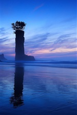 Preview iPhone wallpaper Sea, night, rock, arch, column