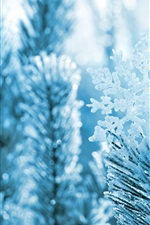 Preview iPhone wallpaper Snowflake, pine needles, branches, winter, snow