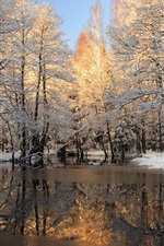 Preview iPhone wallpaper Winter, snow, forest, trees, ice, lake