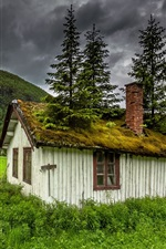 Preview iPhone wallpaper Hemsedal, Norway, house, moss, trees, grass, mountain, clouds