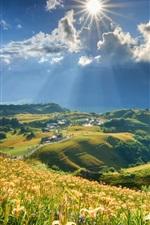 Montanha, inclinação, lírios flores, sol, nuvens, casas