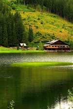 Nature scenery, mountains, trees, river, house, green
