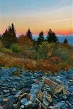 Preview iPhone wallpaper Sunset, sky, mountains, trees, stones
