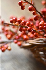 Preview iPhone wallpaper Basket, red berries, bokeh