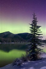 Preview iPhone wallpaper Beautiful Northern lights, mountains, trees, sky, stars, winter, snow, lake