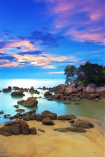 Preview iPhone wallpaper Coast, sea, island, trees, stones, sky, clouds, sunset