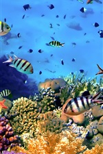 Preview iPhone wallpaper Colorful tropical fish, coral, underwater, ocean
