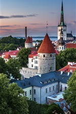 iPhone обои Эстония, Таллин, город, дома, деревья, закат, лето