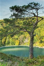 Preview iPhone wallpaper Germany, Bavaria, beautiful landscape, trees, river