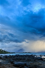 Preview iPhone wallpaper Hawaii, coast, clouds, storm, palm trees, stones, dusk