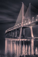 Preview iPhone wallpaper Portugal, bridge, night, lights