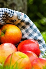 Preview iPhone wallpaper Red apples, fruits, cloth bag, grass