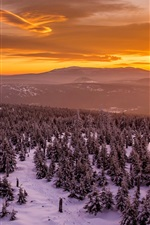 Preview iPhone wallpaper Winter, sunset, trees, snow, mountains, red sky