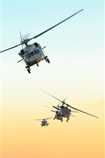 Preview iPhone wallpaper Black Hawk helicopter, Brazil air force, sky, sunset