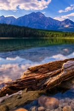 Preview iPhone wallpaper Clear lake, mountains, forest, driftwood, stones, clouds