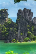 Preview iPhone wallpaper New Caledonia, Pacific ocean, island, trees, cliff, beach, sea