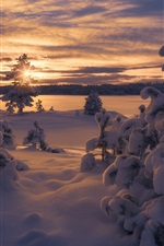 Preview iPhone wallpaper Norway, winter, thick snow, trees, sunset