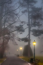 Preview iPhone wallpaper Park, foggy, path, lamp posts, benches, trees, night